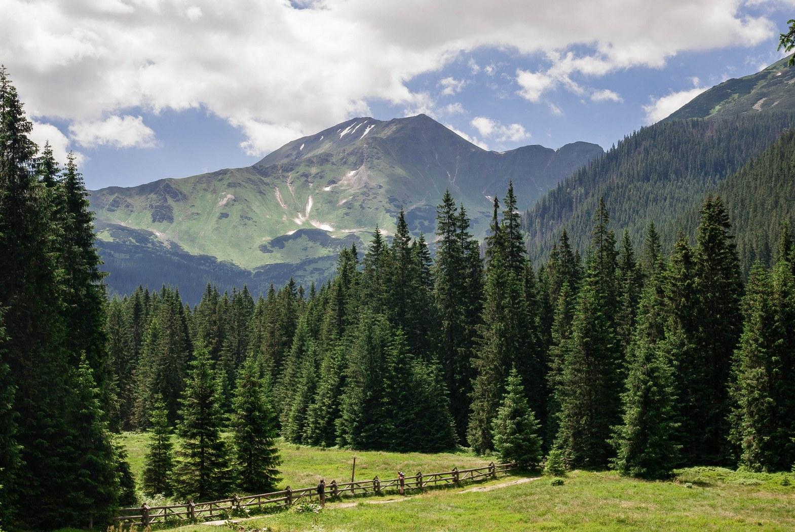 долина Косцелиско