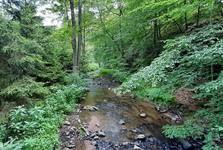 the Mnichovka creek