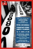 výstava Petra Zatloukala