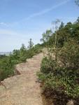 kamenný chodník na vrcholu Plešivce