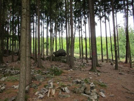 Плешивецкий качающийся камень