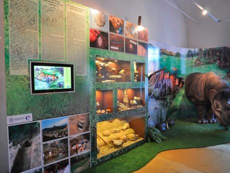 ukázka expozice paleontologické lokality Kostná dolina u Hajnáčky