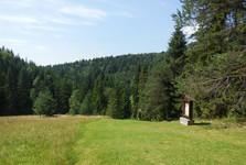 hora Zvir
