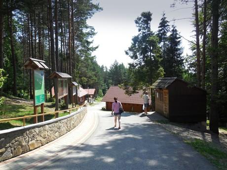 Litmanová - Hora Zvir