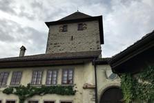 Hegi chateau