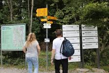 дорожный указатель Felsenegg