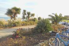 побережье Истборна