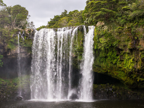 природа на Зеландии