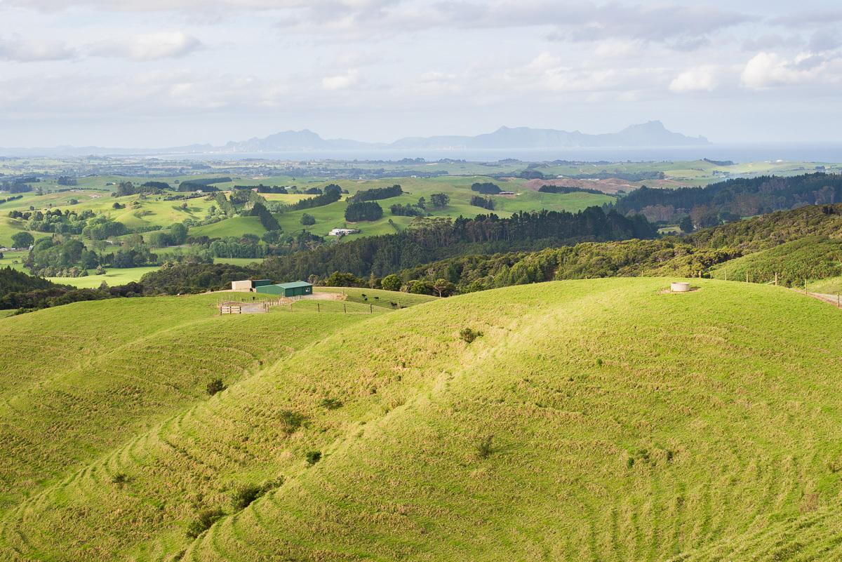 příroda na Zélandu