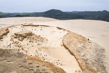 piesočné duny