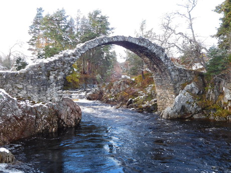 the bridge in Carrbridge