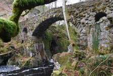 Hermitage Woodland Walk