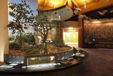 центр для посетителей Ernest F. Coe