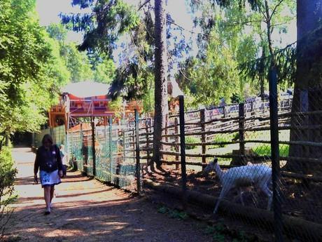 zvířecí park