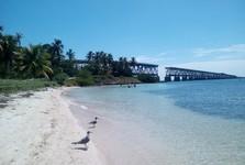 пляж Calusa Beach