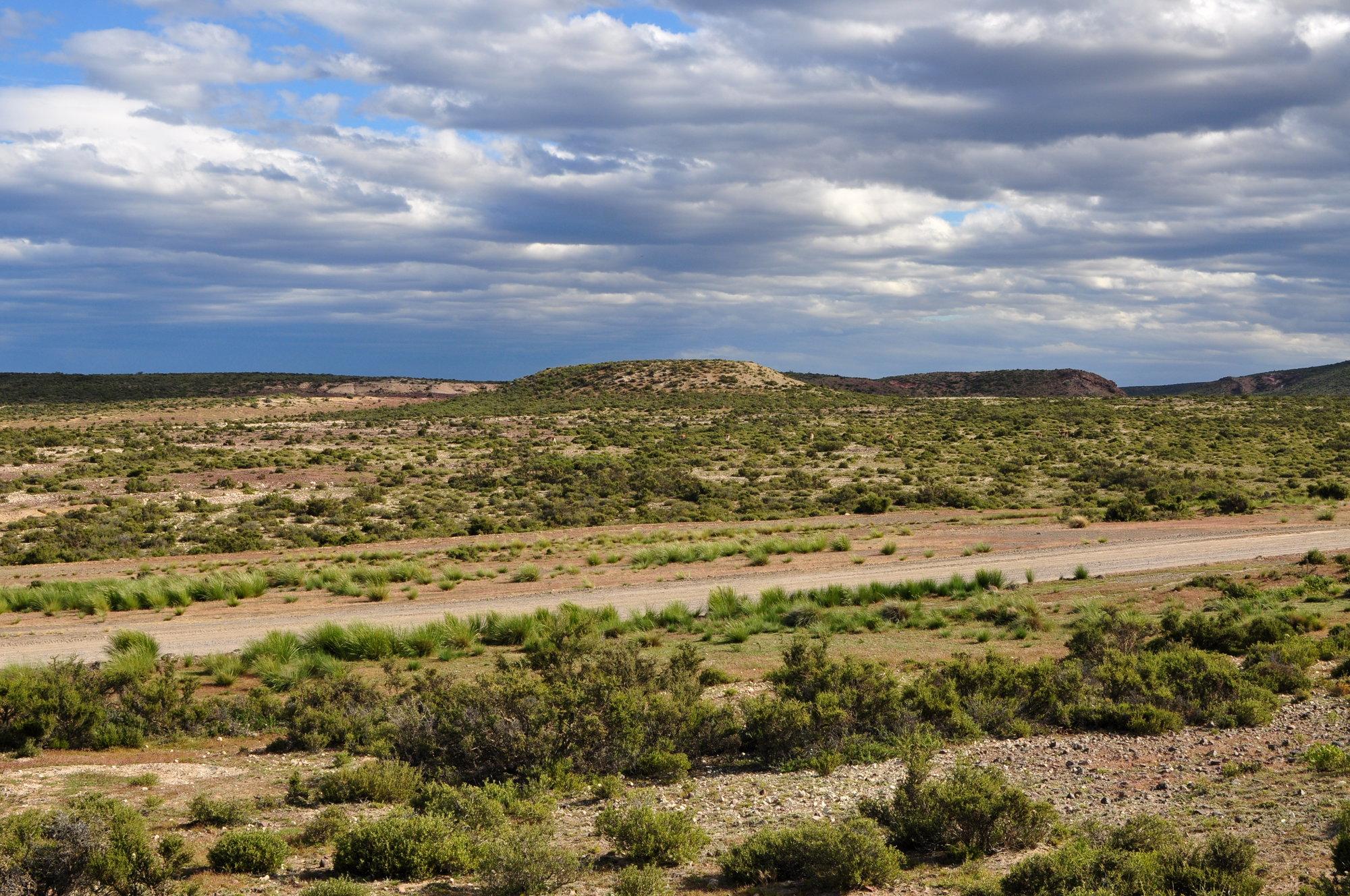 okolí Punta Tombo