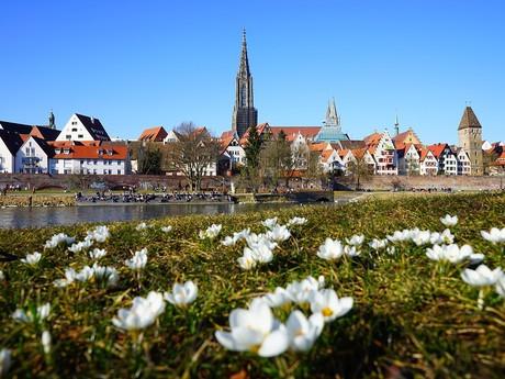 fotosúťaž: jar v meste