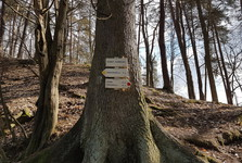 Zlenice castle, signpost