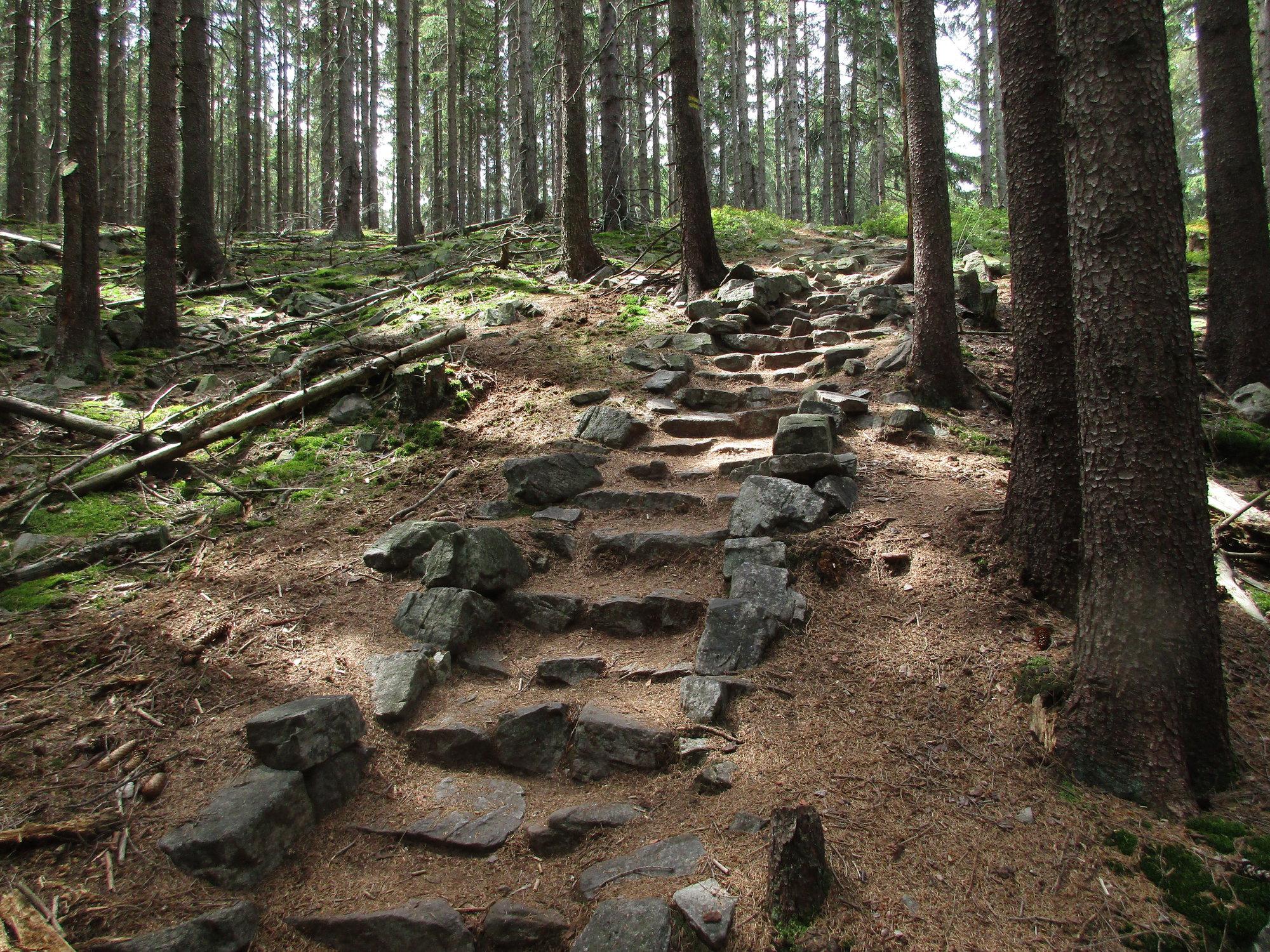 kamenné schodiště pod Tokem