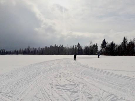Menguso ski-cross paradise