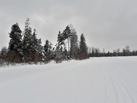 Mengus cross-country ski paradise