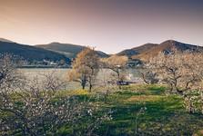 spring, Lower Austria – (c) Niederösterreich-Werbung/ Andreas Hofer