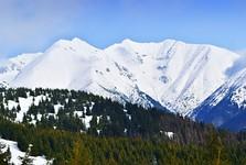 vrchy Pachola, Baníkov a Príslop