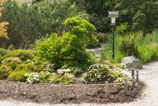 japonská záhrada