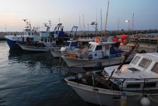 старый порт в Яффе