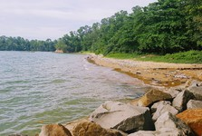 pláž se záplavou plastových lahví a igelitových tašek