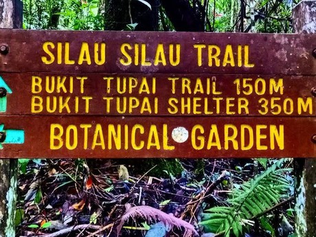 cedule s rozpisem trailů