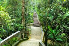 upravené cestičky v botanické zahradě