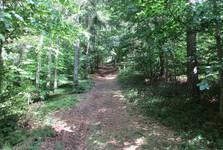 road to Makova
