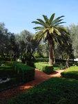 Bahajské zahrady