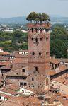 věž Guinigi