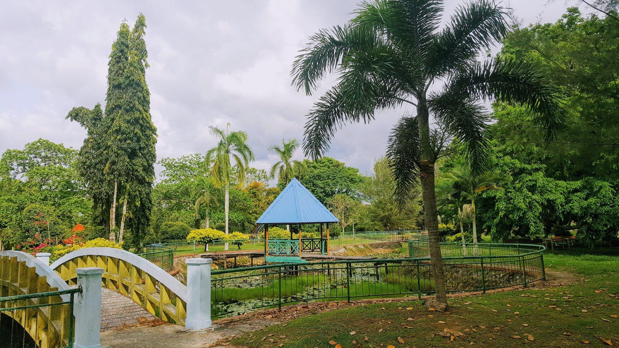 příjemná zahrada u parku