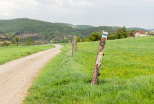 cesta od Berouna