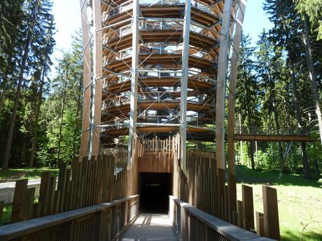 Korunami stromu trail, Krkonose