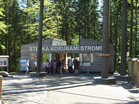 Cesta korunami stromov Krkonoše