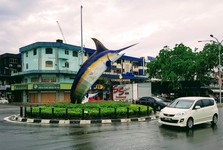 roundabout featuring a swordfish statue