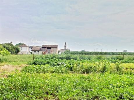 поля в окрестности Sant'Agata