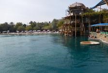 Delfíní útes – na pozorovacím mole