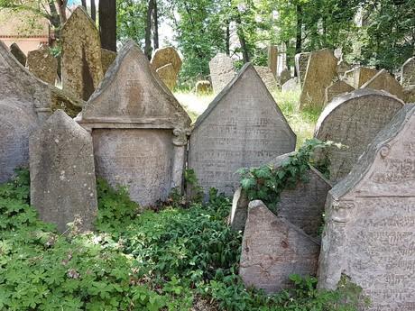 старейшие надгробия