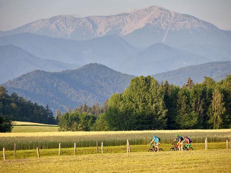 Пистингтальская велотрасса - (c) Wiener Alpen / Thomas Bartl, mountainbikeguides.com