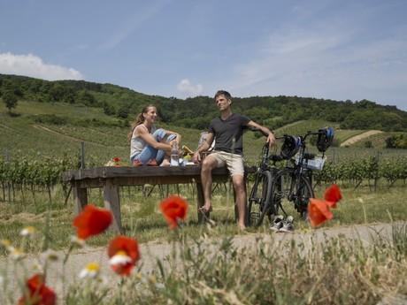 hvězdicové cyklotrasy - (c) Raimo Rumpler