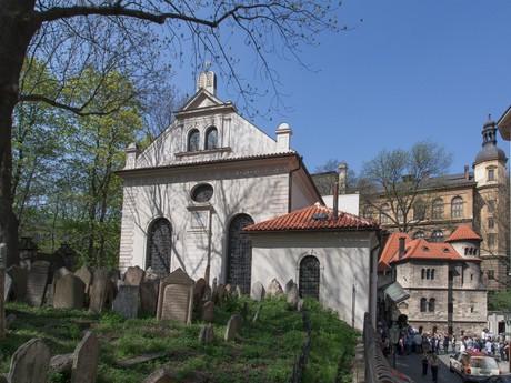 Klausová synagóga, Židovské múzeum v Prahe