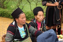 Hmong, Zao