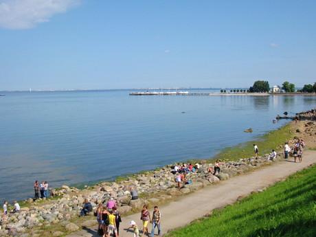 вода из Финского залива используется в каскадах перед Большим дворцом
