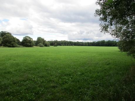 bývalý rybník Hradeček