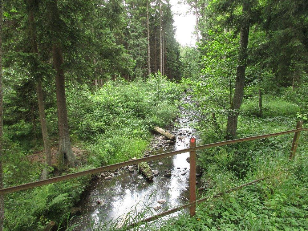 dc58a9ec968 údolí Třítrubeckého potoka Padrťský potok